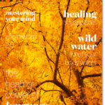 Winter 2014 Issue Out Now