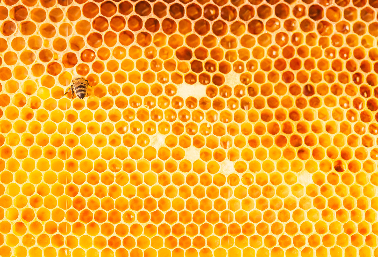 health-benefits-of-raw-honey-pic