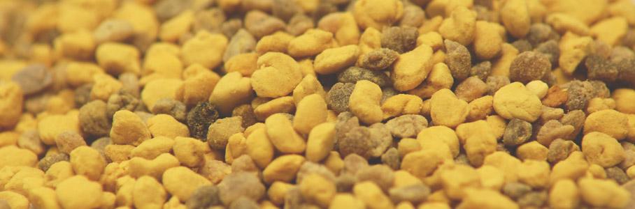 bee-pollen-granules