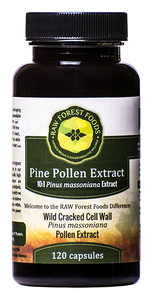 raw-forest-foods-pine-pollen-capsules