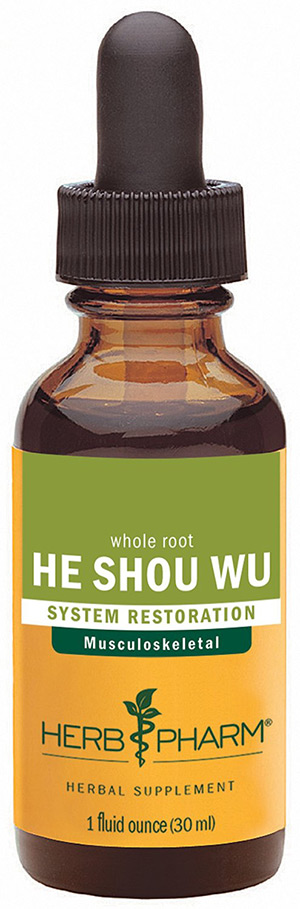 The Miraculous Health Benefits Of He Shou Wu Fo Ti