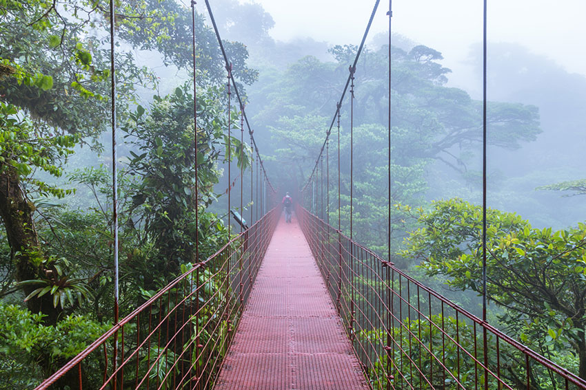 destinations-costa-rica-montverde-cloud-forest