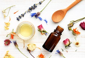 Plants for Peace: The Top 10 Best Essential Oils for Relieving Anxiety and Stress