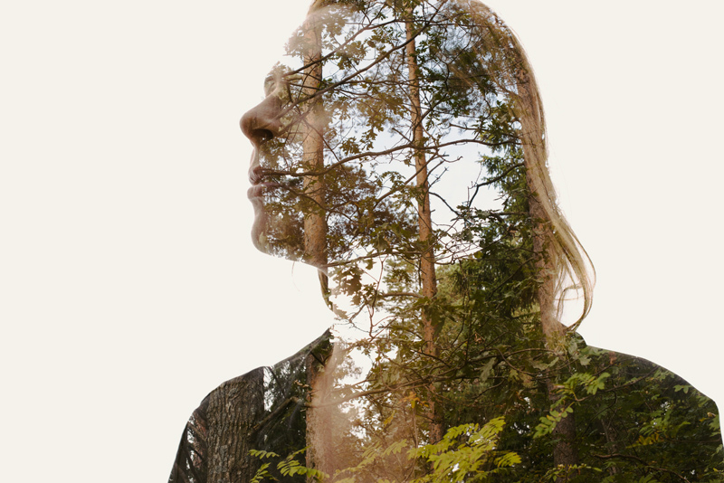 Late-Autumn-Christoffer-Relander