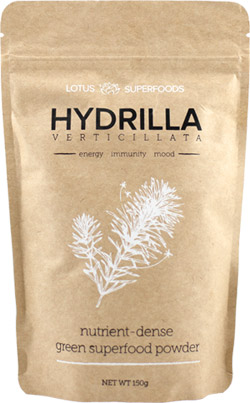 Hydrilla-Verticillata-green-superfood-powder