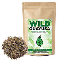 Guayusa-Tea-Organic-Longevity
