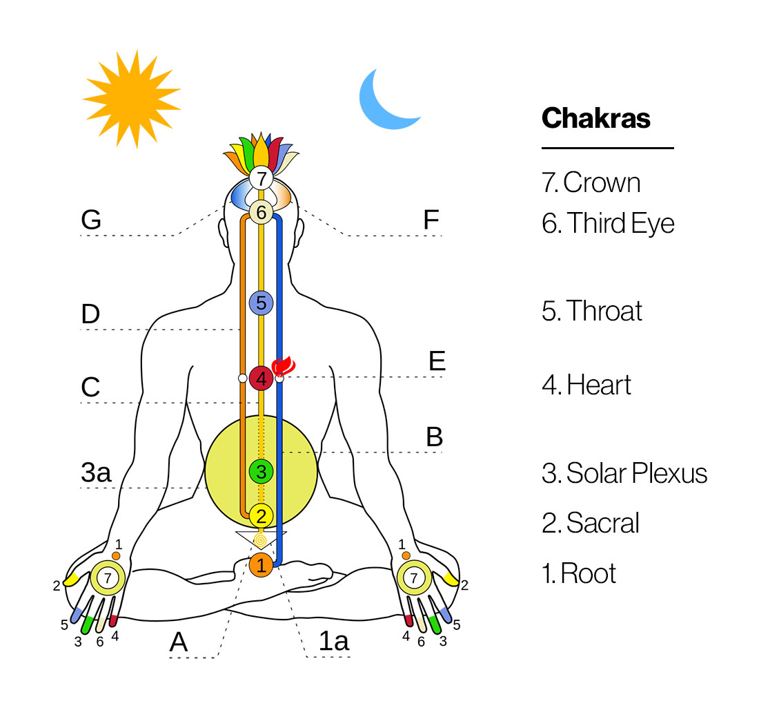 Energetic Anatomy A Guide To Your Bodys Energy Systems Heart Diagram And Old Love On Pinterest Chakra Body Graphic
