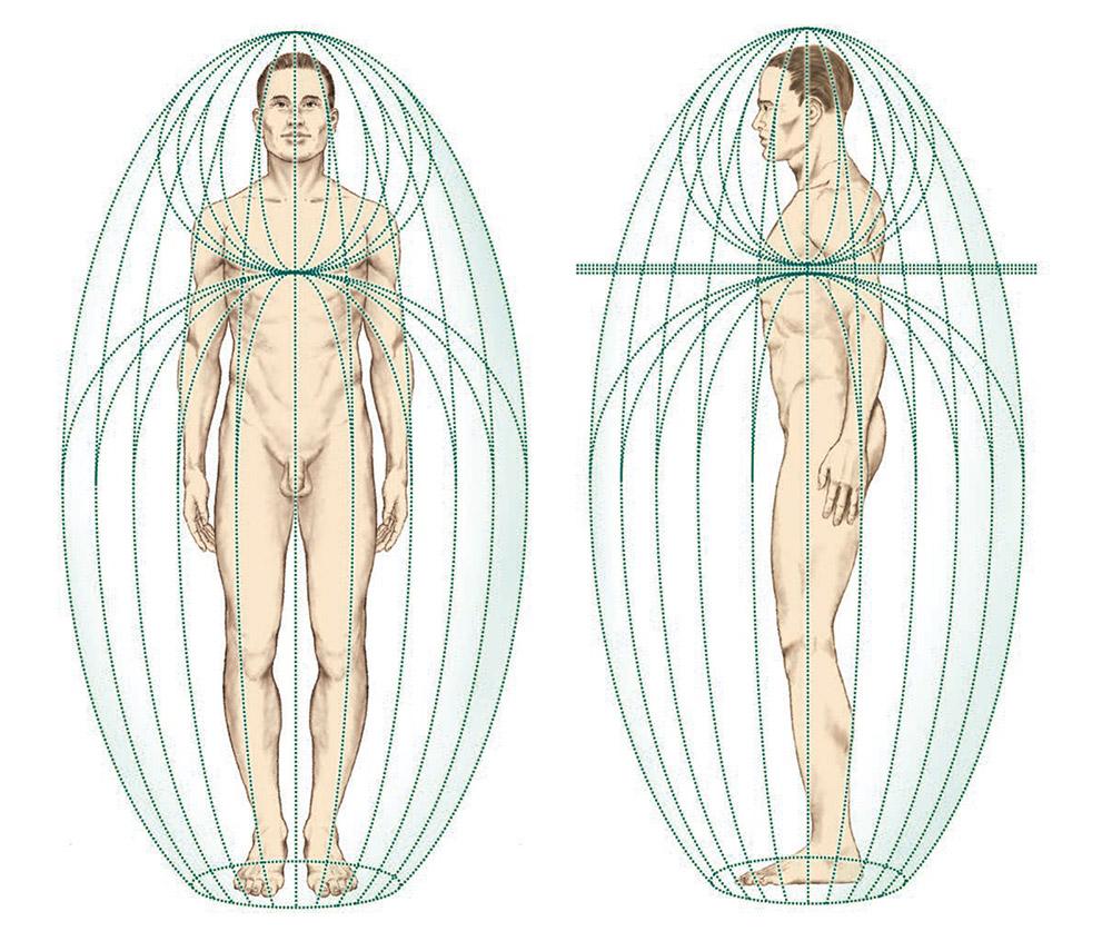 assemblage-point-human-biofield