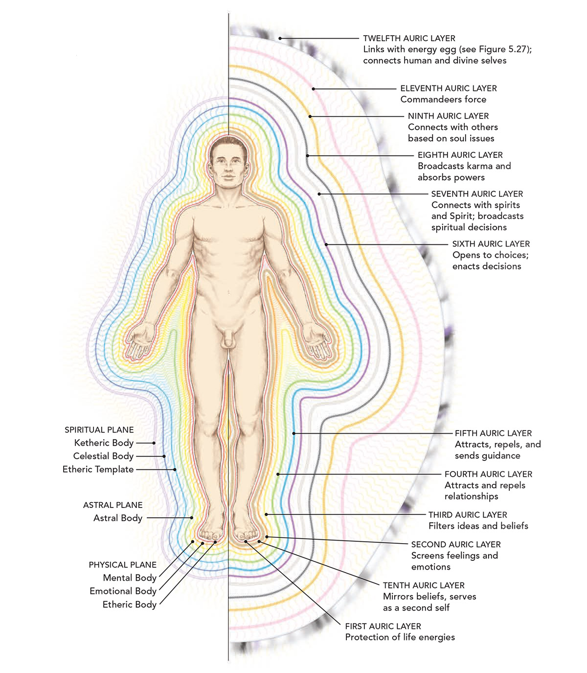 The Subtle Body And Aura Diagram