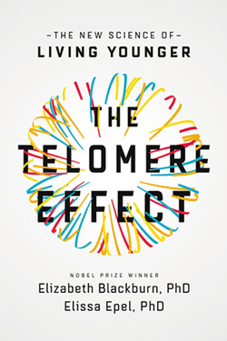 the-telomere-effect