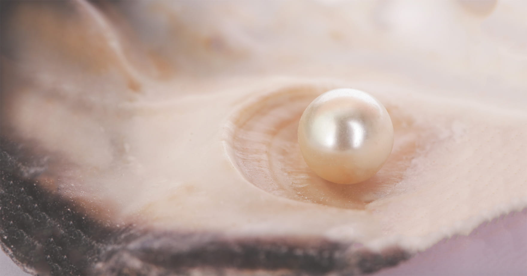 Der gesundheitliche Nutzen von Perlpulver: Superfood aus dem Meer