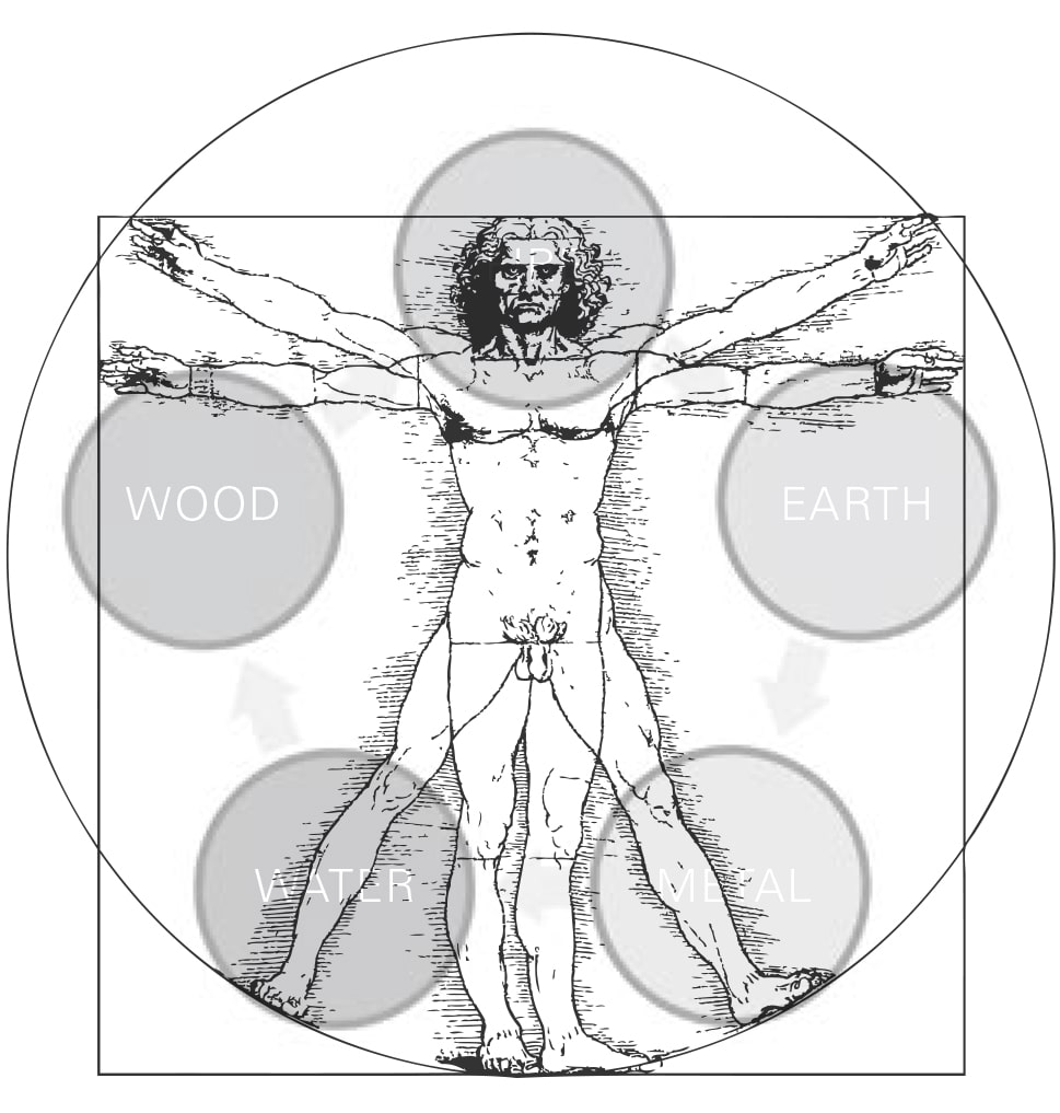 Figura 49 - Cinco elementos do corpo humano